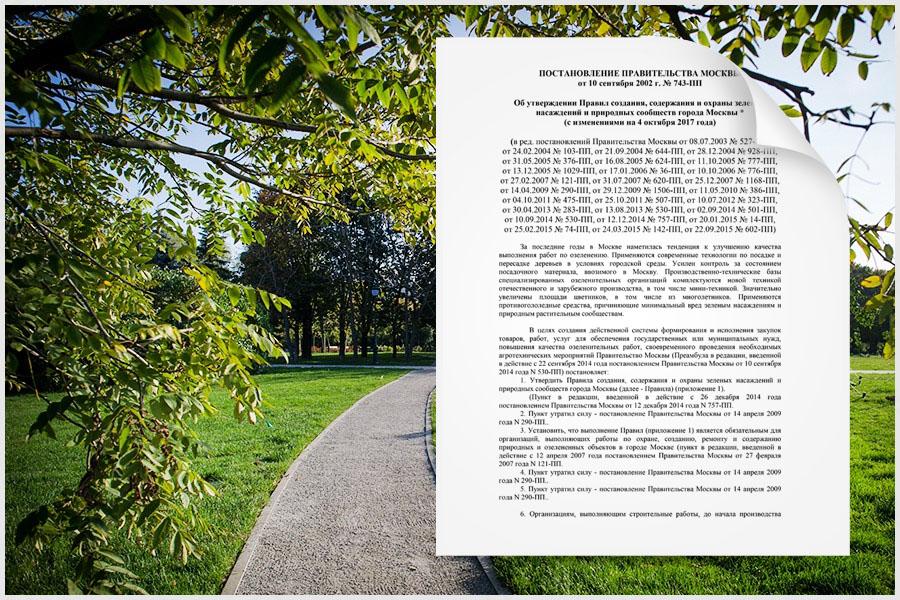 Для учета и контроля за состоянием зеленых насаждений были приняты нормативно-правовые акты